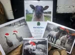 Elm Tree Farm Christmas cards and 2017 calendar