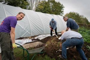 Aviva volunteers hard at work on the Farm