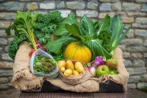elm tree farm veg box